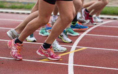 Grasas saturadas e insaturadas: qué debes saber para tu alimentación deportiva