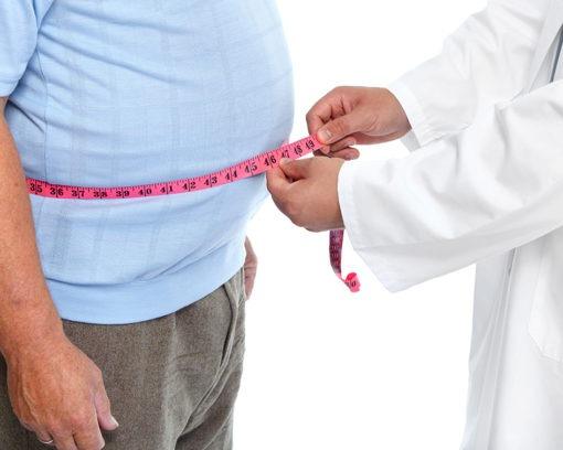 master-en-trastornos-de-la-conducta-alimentaria-master-experto-en-obesidad-y-mejora-de-la-nutricion