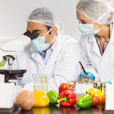 master-experto-en-seguridad-alimentaria