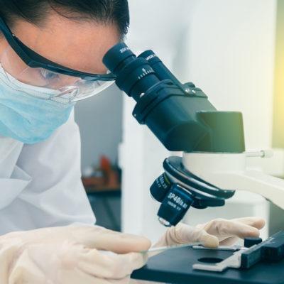 postgrado-experto-en-enfermedades-e-inmunonutricion